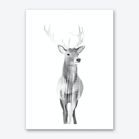 B&W Deer Art Print