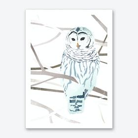 Snow Owl Art Print