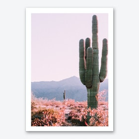 Desert Cactus Photo Art Print