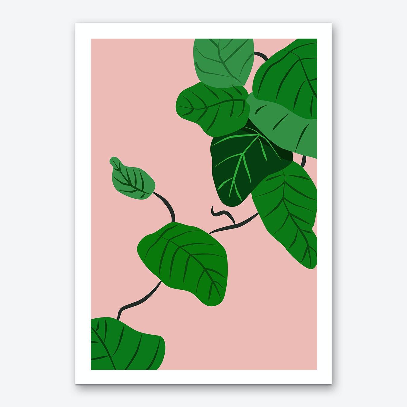 Leaves Plant Illustration