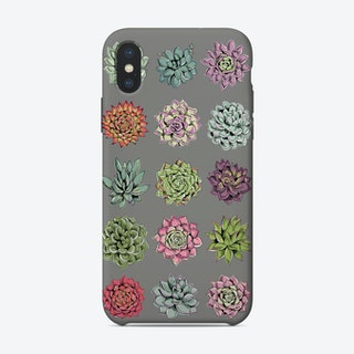 Succulents Dark Grey iPhone Case
