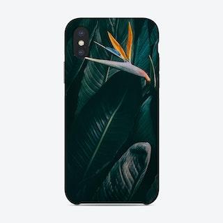 Bird Of Paradise Phone Case