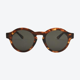 Esso Sunglasses in Tortoise