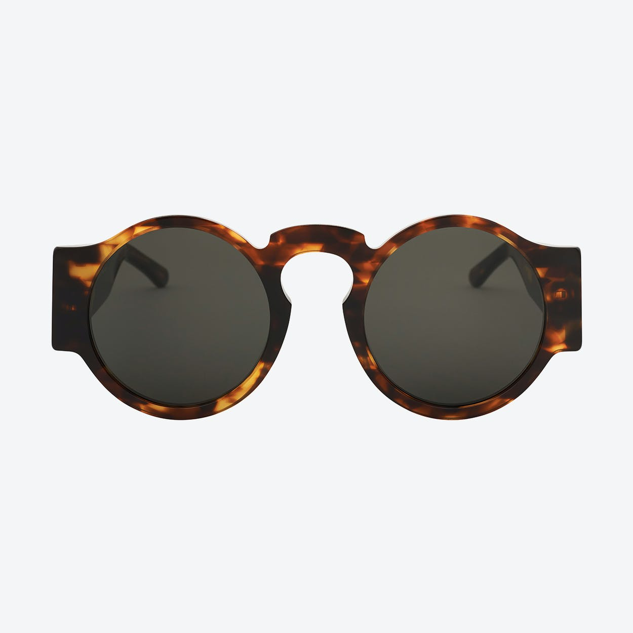 Didac Sunglasses in Tortoise