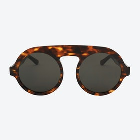 Nicolas Sunglasses in Tortoise