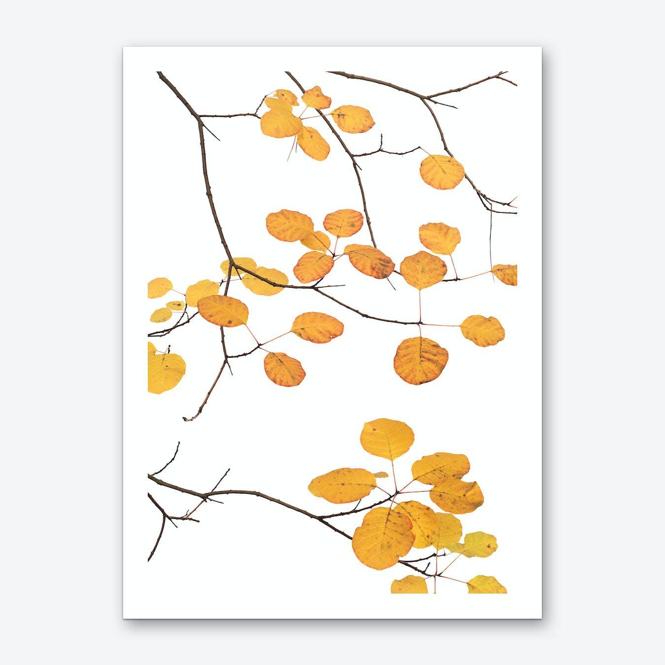 Wig Tree Art Print