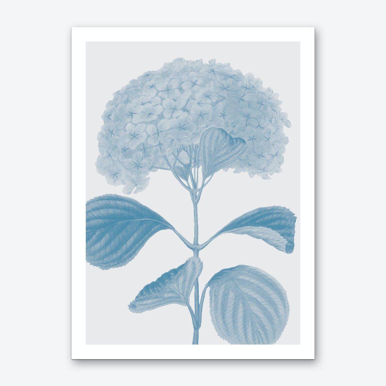 Flower No.1 Art Print