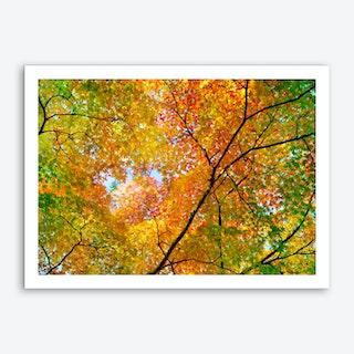 Autumn1 Art Print