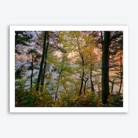 Tree1 Art Print