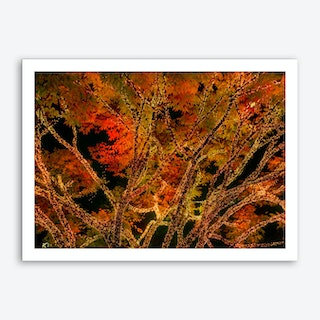 Tree Lights Art Print