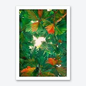 Leaves1 Art Print