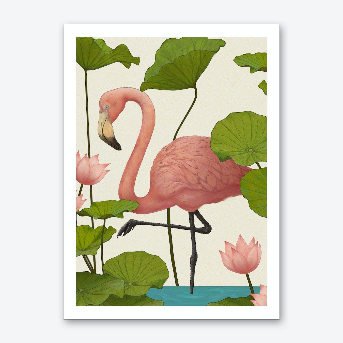 Flamingo V Art Print