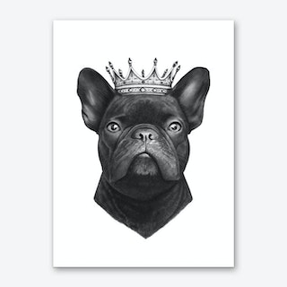 King French Bulldog Art Print