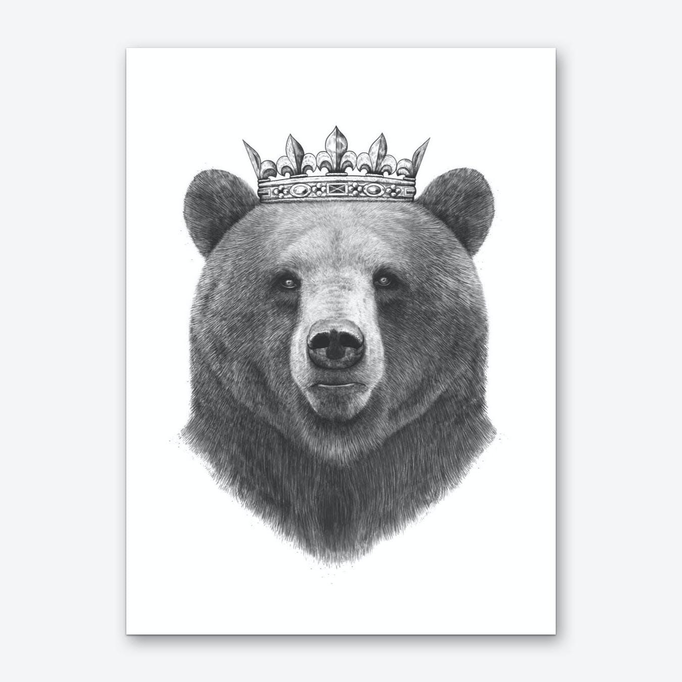 King Bear Art Print