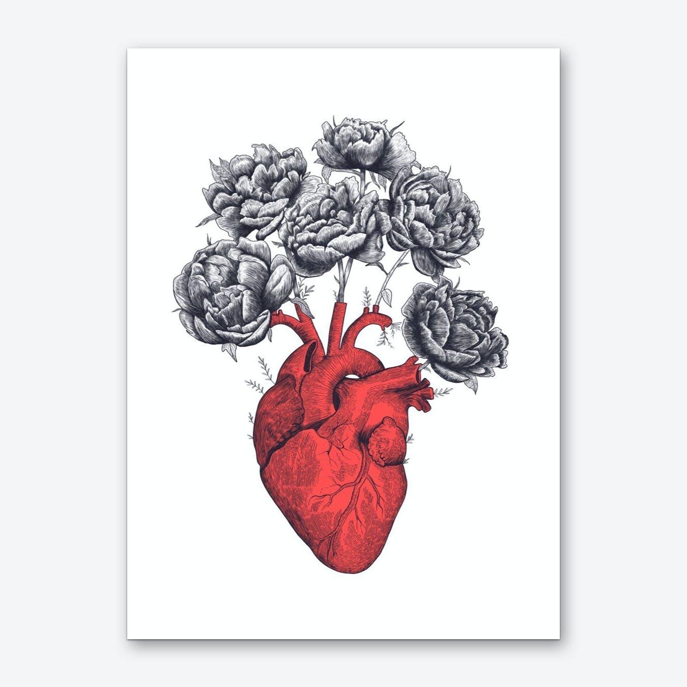 Heart With Peonies Art Print