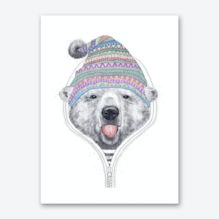 Bear In A Hood Art Print