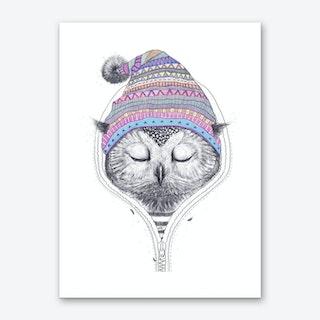 Owl In A Hood Art Print