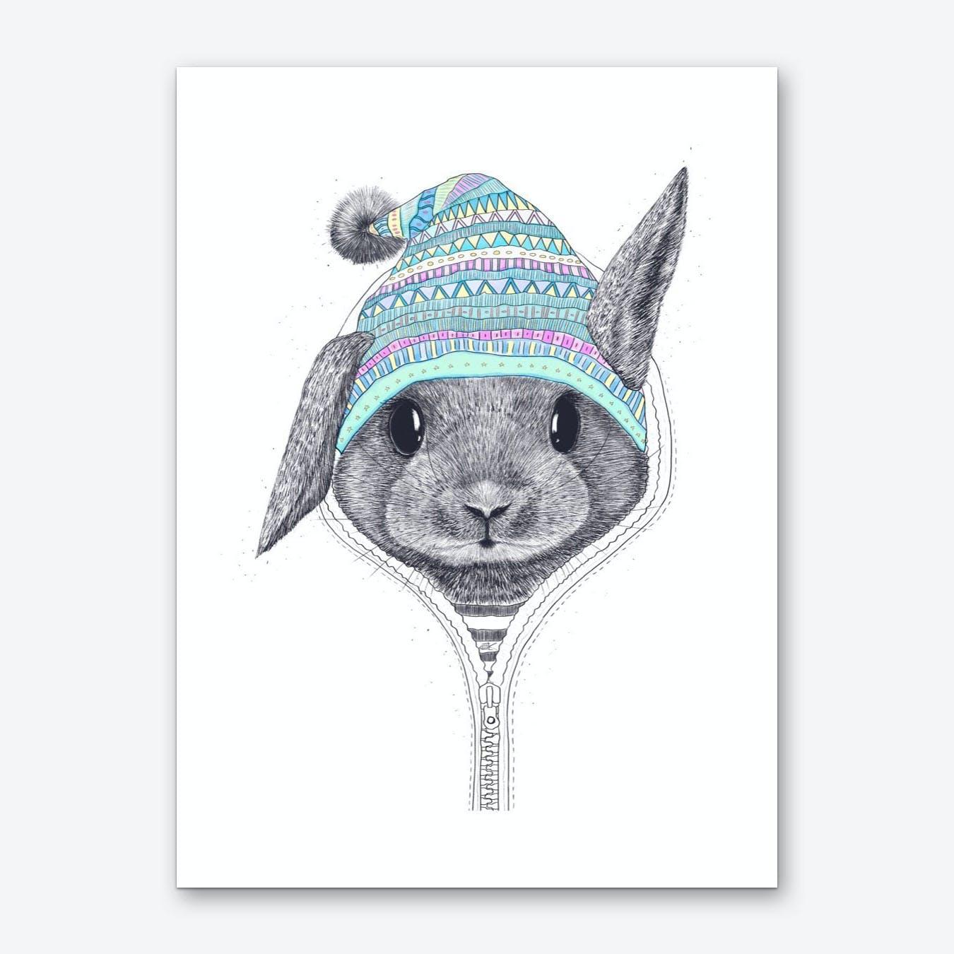 Rabbit In A Hood Art Print