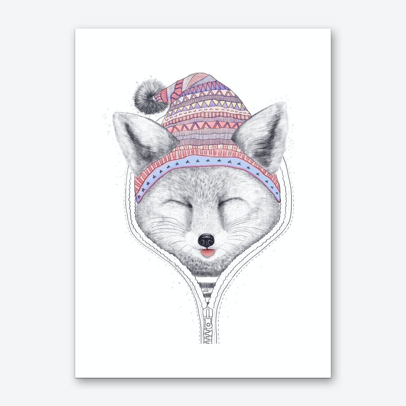 Fox In A Hood Art Print
