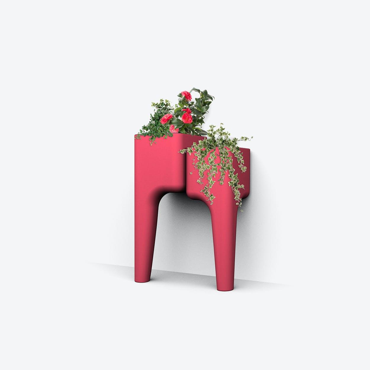 Kiga Kitchen Garden S Strawberry Red