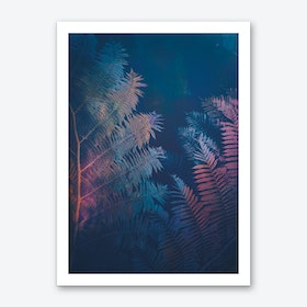 Ferns II Art Print