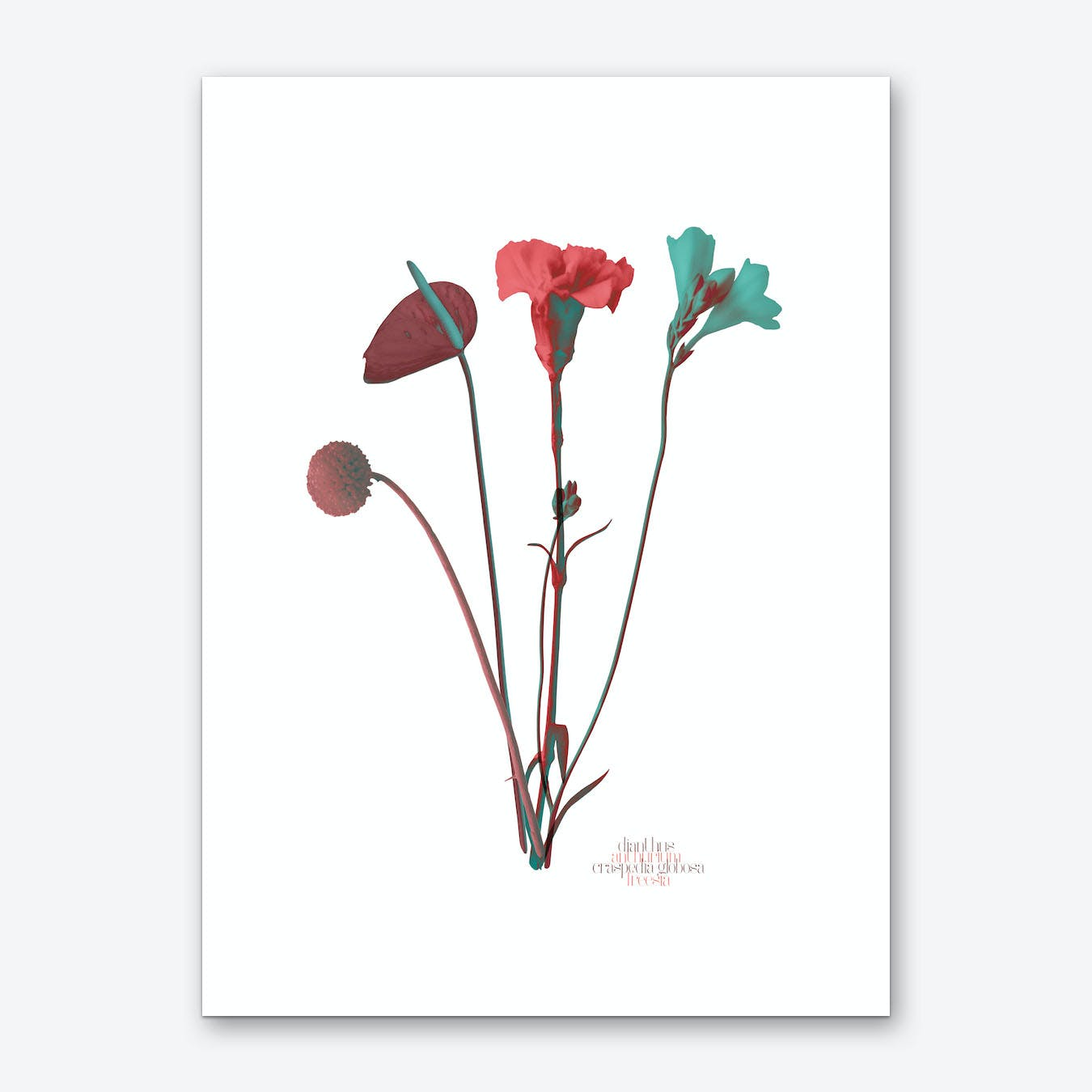 Ode aux Fleurs Rouge Art Print