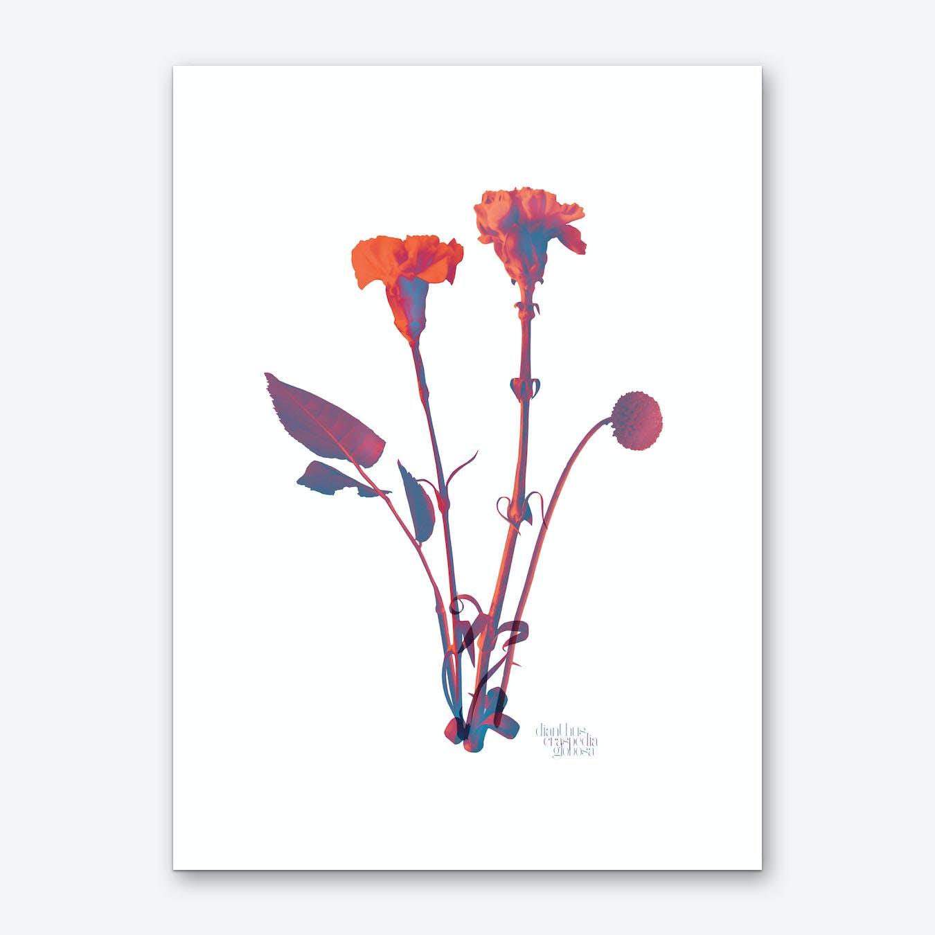 Ode aux Fleurs Orange Art Print