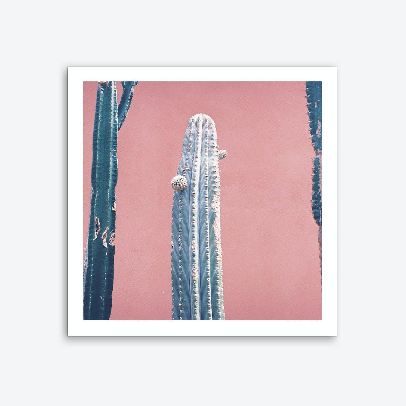 It Stings Pink Art Print