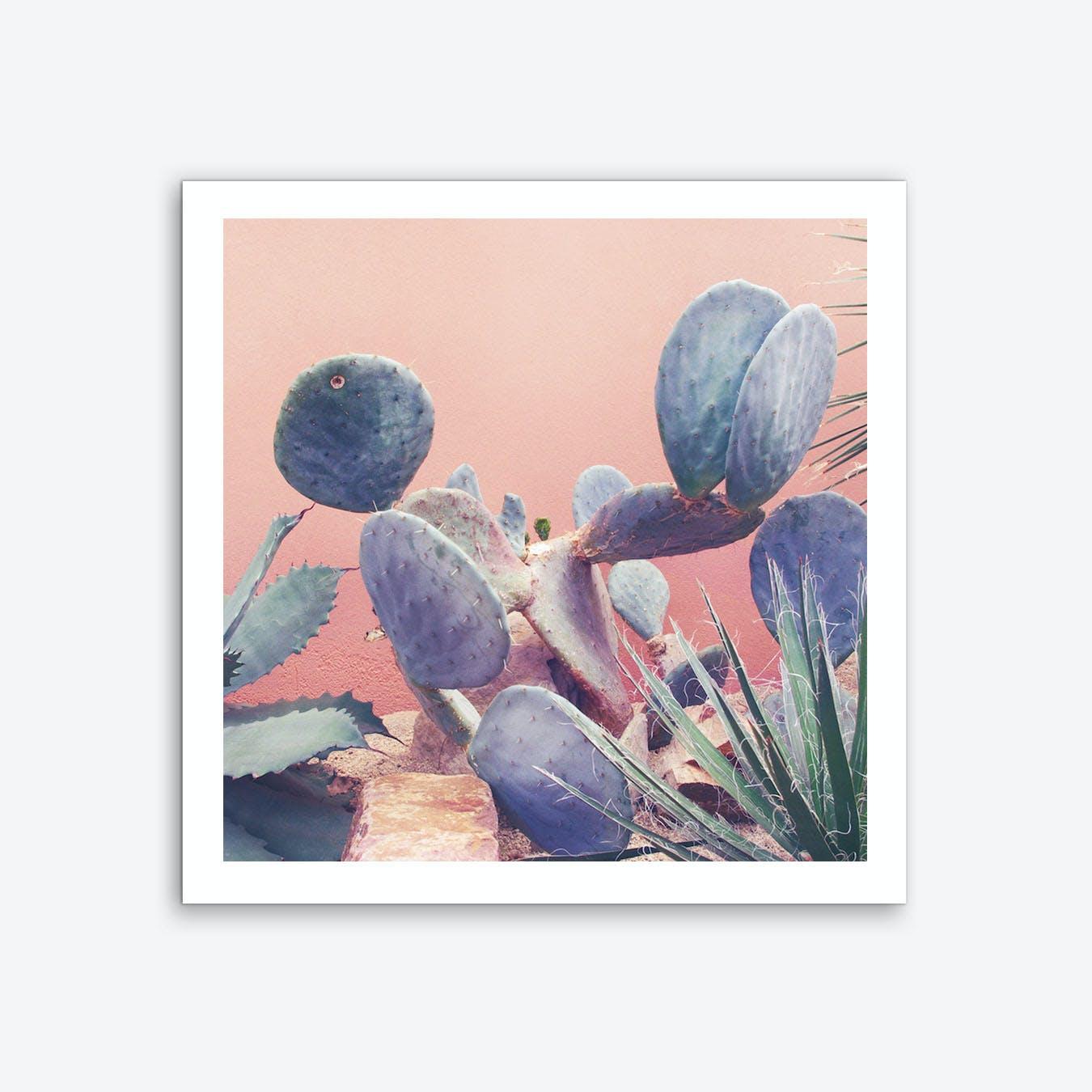 It Stings Cactus Art Print