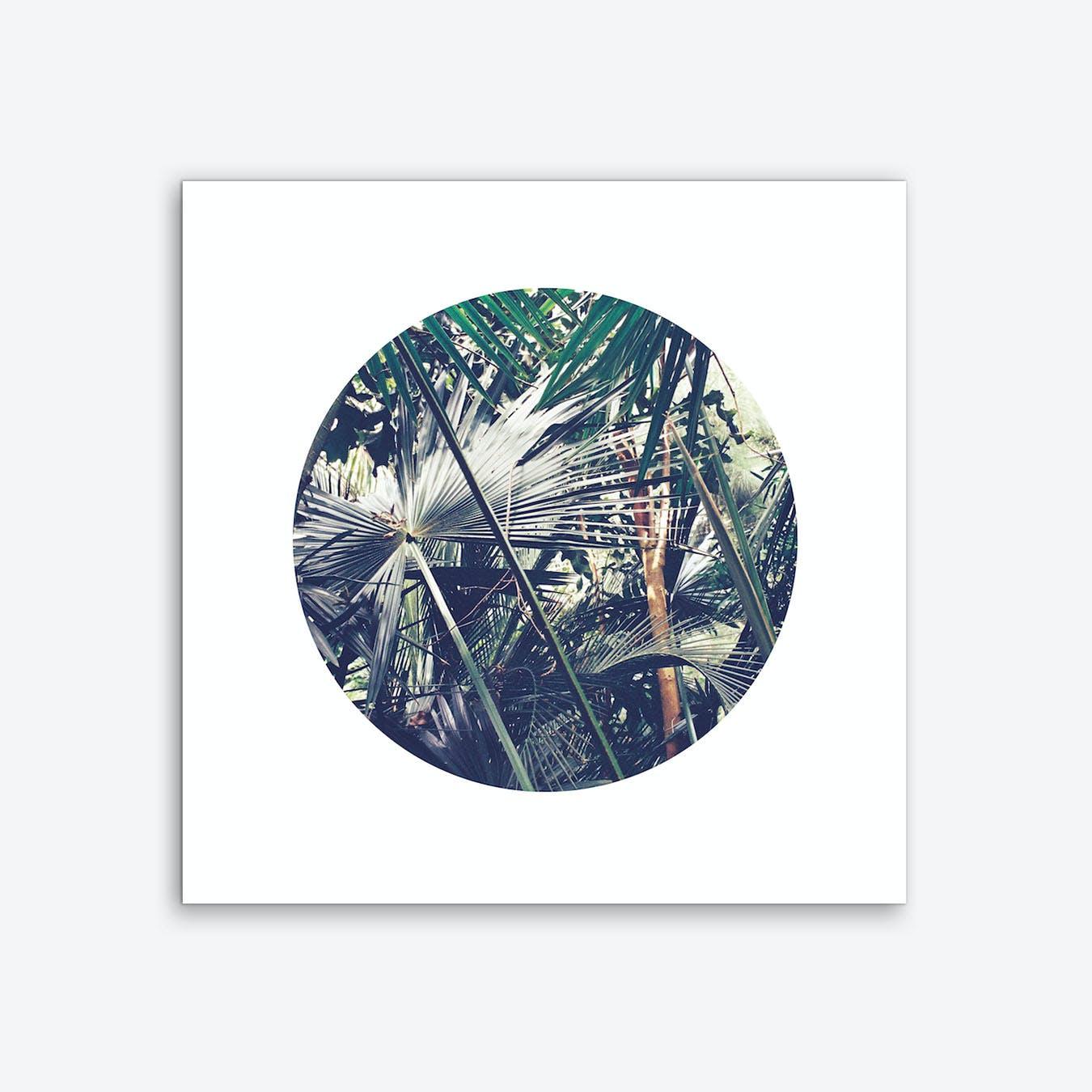 Into the Tropics Green Art Print