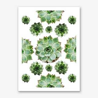 Succulents Starshape Art Print