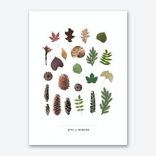 Bits Of Winter Art Print