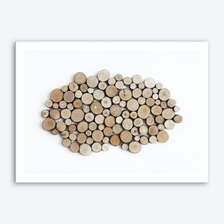 Wood Collection Art Print