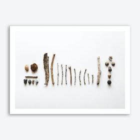 Rocks & Twigs 2 Art Print