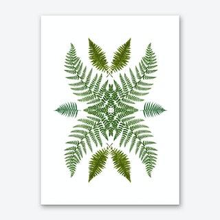 Flowing Ferns Art Print