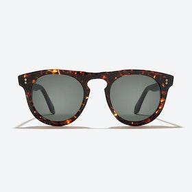 Corvus Sunglasses in Tortoise
