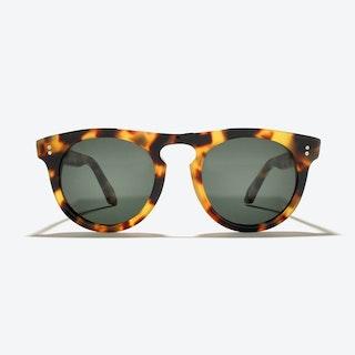 Corvus Sunglasses in Amber