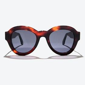 Vega Sunglasses in Tortoise