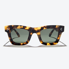 Volans Sunglasses in Amber
