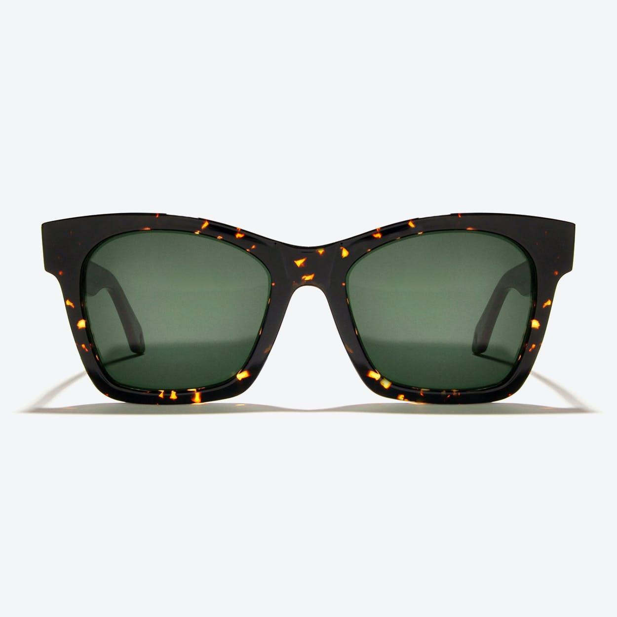 Draco Sunglasses in Tortoise