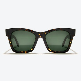 Draco Sunglasses in Tortoise
