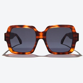 Hydra Sunglasses in Tortoise