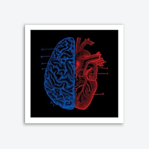 Heart and Brain Art Print
