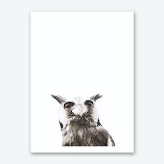 Lil Owl Art Print