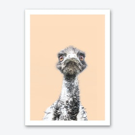 Orange Emu Art Print