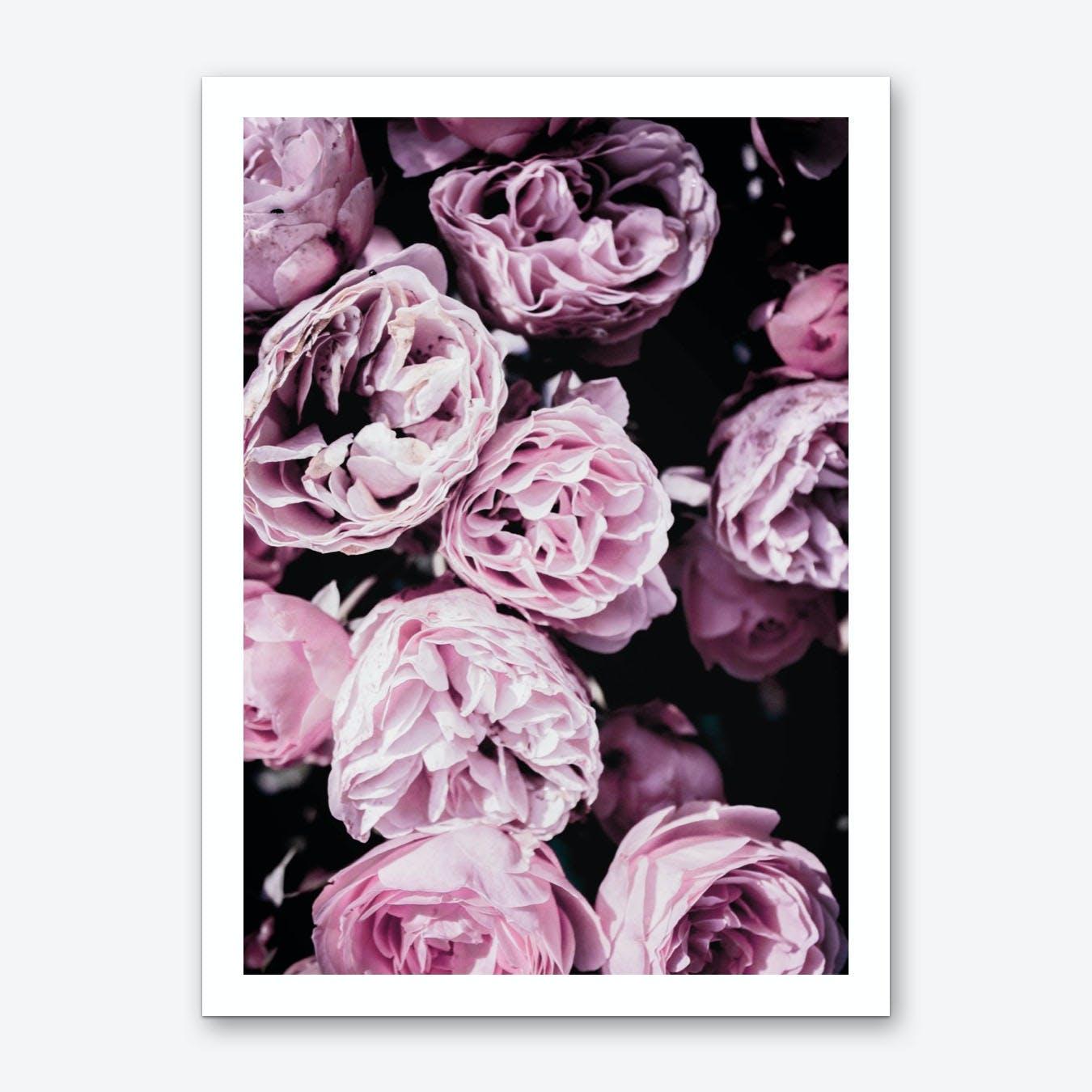 Pink Flowers III Art Print