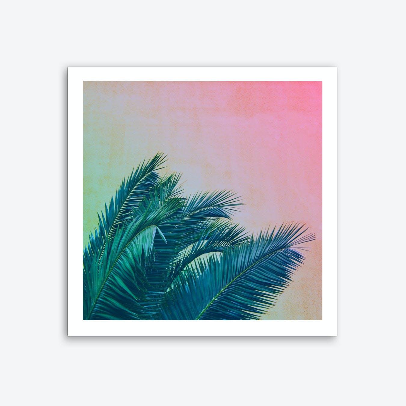 Palm III Art Print