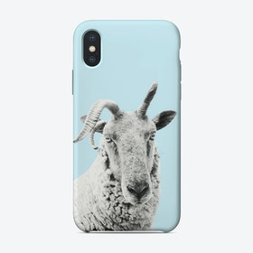 Blue Sheep iPhone Case