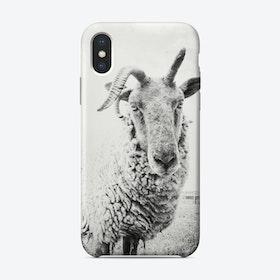 Sheep II iPhone Case