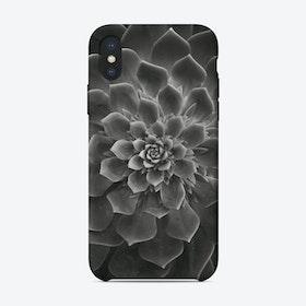 Succulent II iPhone Case